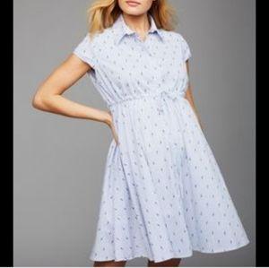Pietro Brunelli- Maternity, Shirt Dress